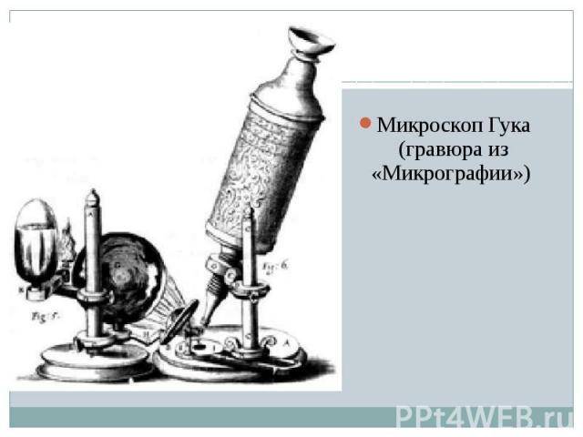 Микроскоп Гука (гравюра из «Микрографии»)
