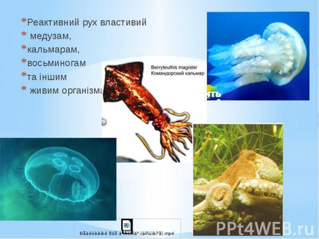 Реактивний рух властивий Реактивний рух властивий медузам, кальмарам, восьминогам та іншим живим організмам
