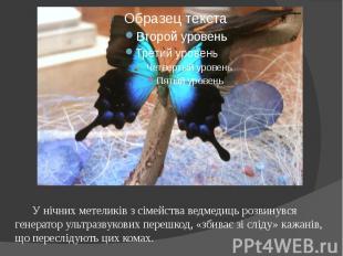 У нічних метеликів з сімейства ведмедиць розвинувся генератор ультразвукових пер