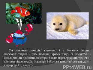 Ультразвукову локацію виявлено і в багатьох інших морських тварин – риб, тюленів