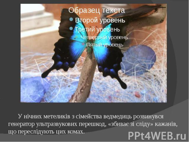 У нічних метеликів з сімейства ведмедиць розвинувся генератор ультразвукових перешкод, «збиває зі сліду» кажанів, що переслідують цих комах.