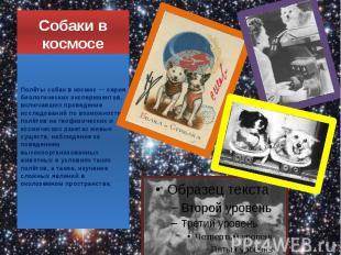 Собаки в космосе Полёты собак в космос — серия биологических экспериментов, вклю