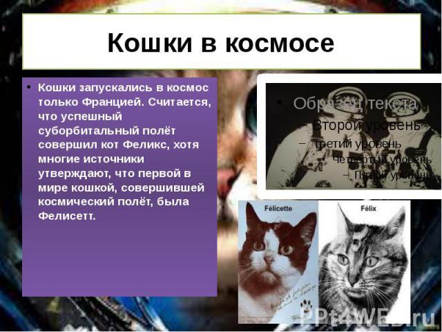 Кошки в космосе Кошки запускались в космос только Францией. Считается, что успешный суборбитальный полёт совершил кот Феликс, хотя многие источники утверждают, что первой в мире кошкой, совершившей космический полёт, была Фелисетт.