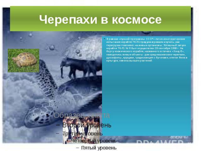 Черепахи в космосе В рамках «лунной программы СССР» летно-конструкторские испытания корабля 7К-Л1 предусматривали изучить, как перегрузки повлияют на живые организмы. Успешный запуск корабля 7К-Л1 № 9 был осуществлен 15 сентября 1968 г. На борту кос…