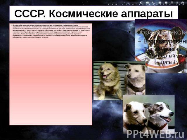 СССР. Космические аппараты Полёты собак на космических аппаратах предполагали орбитальные полёты вокруг Земли продолжительное время с первой космической скоростью. Основной целью экспериментов по запускам космических кораблей-спутников, было исследо…