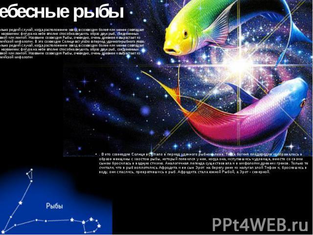 Небесные рыбы Довольно редкий случай, когда расположение звезд в созвездии более или менее совпадает с его названием: фигура на небе вполне способна внушить образ двух рыб, соединенных веревкой или лентой. Название созвездия Рыбы, очевидно, очень др…