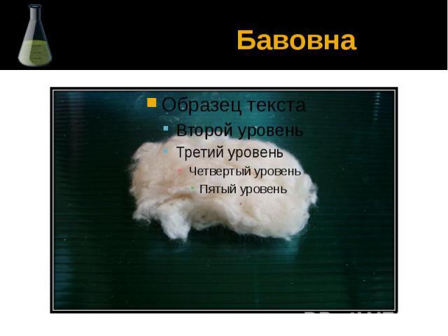 Бавовна