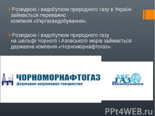 Розвідкою і видобутком природного газу в Україні займається переважно компанія&n
