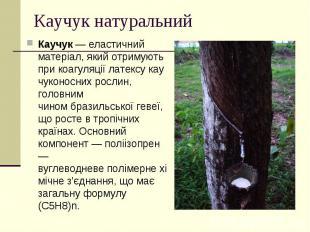 Каучук натуральний Каучук— еластичний матеріал, який отримують прико