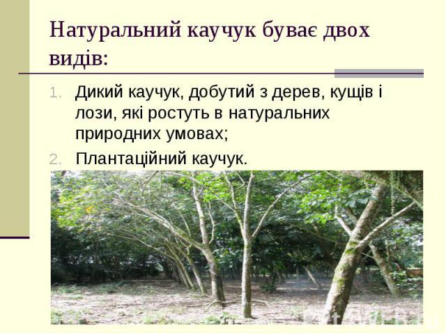 Натуральний каучук буває двох видів: Дикий каучук, добутий з дерев, кущів і лози, які ростуть в натуральних природних умовах; Плантаційний каучук.