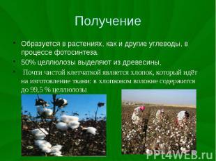 Получение Образуется в растениях, как и другие углеводы, в процессе фотосинтеза.