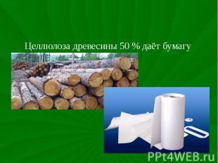 Целлюлоза древесины 50 % даёт бумагу Целлюлоза древесины 50 % даёт бумагу