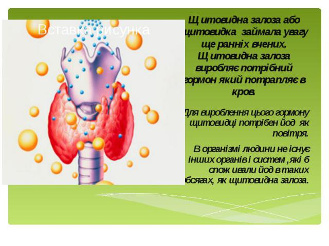 Щитовидна залоза або щитовидка займала увагу ще ранніх вчених. Щитовидна залоза виробляє потрібний гормон який потрапляє в кров. Для вироблення цього гормону щитовидці потрібен йод як повітря. В організмі людини не існує інших органів і систем ,які …
