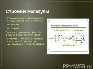Строение молекулы Глюкоза может существовать в виде циклов (α и β глюкозы). α-гл