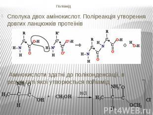 Поліамід Сполука двох амінокислот. Поліреакція утворення довгих ланцюжківп