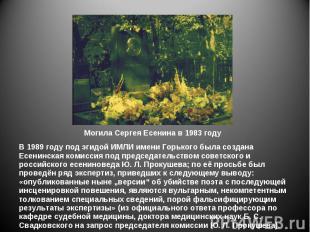 В 1989 году под эгидой ИМЛИ имени Горького была создана Есенинская комиссия под