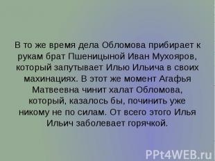 В то же время дела Обломова прибирает к рукам брат Пшеницыной Иван Мухояров, кот