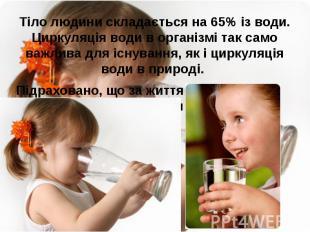 Тіло людини складається на 65% із води. Циркуляція води в організмі так само важ