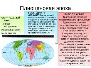 РАСТИТЕЛЬНЫЙ МИР: РАСТИТЕЛЬНЫЙ МИР: По мере охлаждения климата на смену лесам пр
