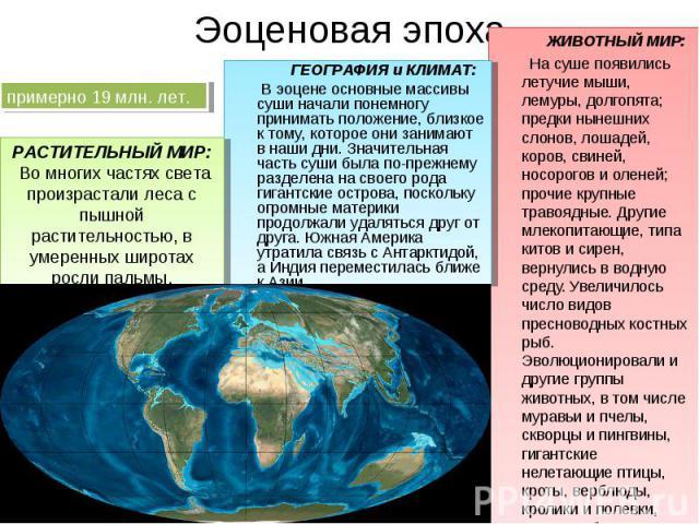 ЖИВОТНЫЙ МИР: ЖИВОТНЫЙ МИР: На суше появились летучие мыши, лемуры, долгопята; предки нынешних слонов, лошадей, коров, свиней, носорогов и оленей; прочие крупные травоядные. Другие млекопитающие, типа китов и сирен, вернулись в водную среду. Увеличи…
