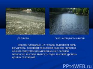 Водоем площадью 1.2 гектара, выполняет роль регулятора. Основной проблемой водое