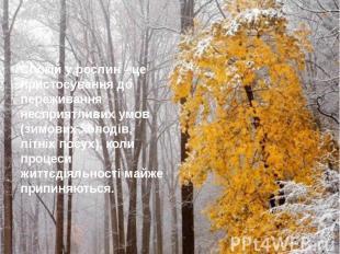 Спокій у рослин - це пристосування до переживання несприятливих умов (зимових хо