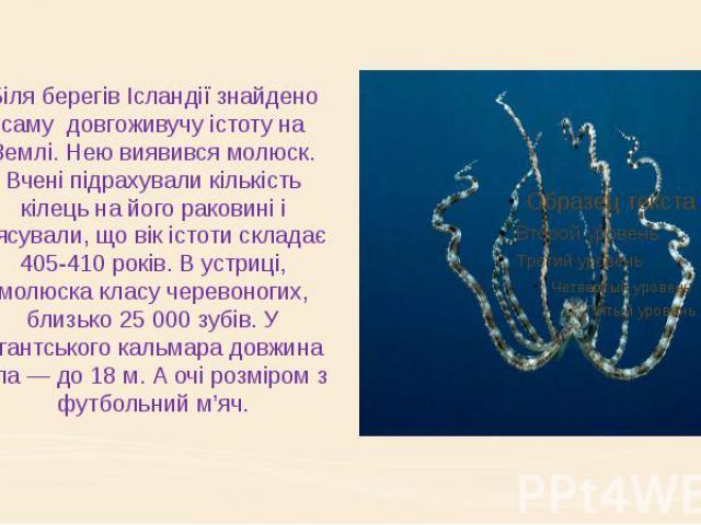 Біля берегів Ісландії знайдено саму довгоживучу істоту на Землі. Нею виявився молюск. Вчені підрахували кількість кілець на його раковині і з'ясували, що вік істоти складає 405-410 років. В устриці, молюска класу черевоногих, близько 25 000 зy…