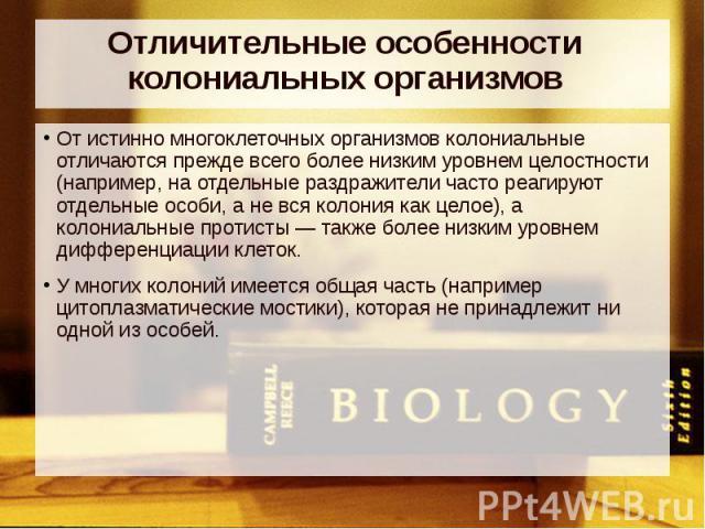 Отличительные особенности колониальных организмов От истинно многоклеточных организмов колониальные отличаются прежде всего более низким уровнем целостности (например, на отдельные раздражители часто реагируют отдельные особи, а не вся колония как ц…