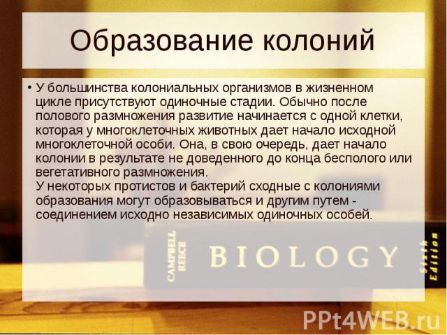 Образование колоний У большинства колониальных организмов вжизненном циклеприсутствуют одиночные стадии. Обычно после полового размножения развитие начинается с одной клетки, которая у многоклеточных животных дает начало исходной многокл…