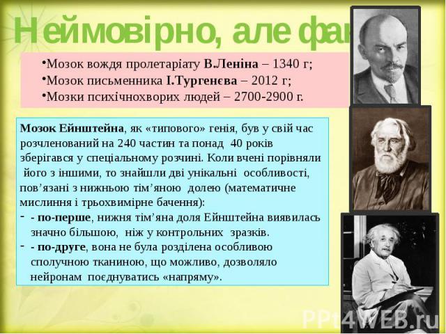 Неймовірно, але факт! Мозок вождя пролетаріату В.Леніна – 1340 г; Мозок письменника І.Тургенєва – 2012 г; Мозки психічнохворих людей – 2700-2900 г.
