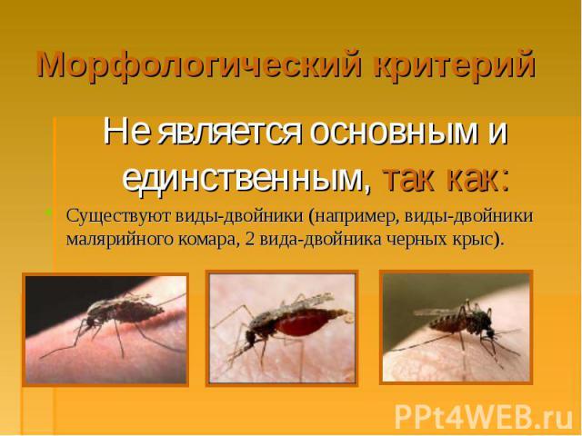 Не является основным и единственным, так как: Не является основным и единственным, так как: Существуют виды-двойники (например, виды-двойники малярийного комара, 2 вида-двойника черных крыс).