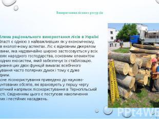 Використання лісових ресурсів