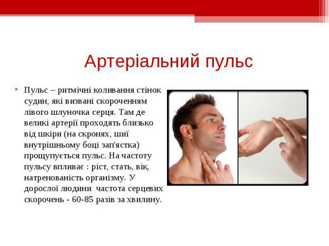 Пульс – ритмічні коливання стінок судин, які визвані скороченням лівого шлуночка серця. Там де великі артерії проходять близько від шкіри (на скронях, шиї внутрішньому боці зап'ястка) прощупується пульс. На частоту пульсу впливає : ріст, стать, вік,…