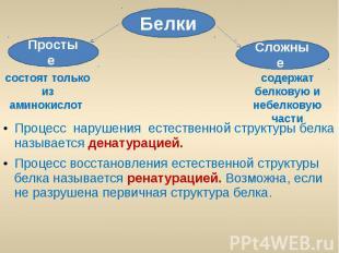 Процесс нарушения естественной структуры белка называется денатурацией. Процесс