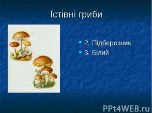 Їстівні гриби 2. Підберезник 3. Білий