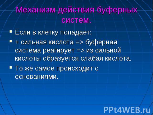 Механизм действия буферных систем. Если в клетку попадает: + сильная кислота => буферная система реагирует => из сильной кислоты образуется слабая кислота. То же самое происходит с основаниями.