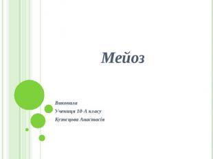 Мейоз Виконала Учениця 10-А класу Кузнєцова Анастасія