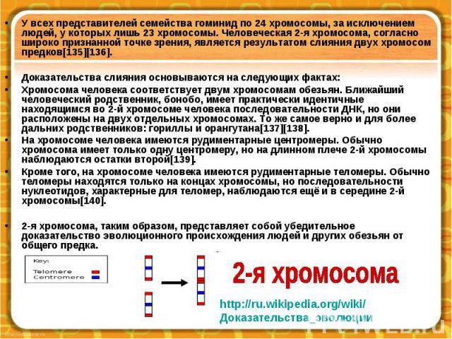 У всех представителей семейства гоминид по 24 хромосомы, за исключением людей, у которых лишь 23 хромосомы. Человеческая 2-я хромосома, согласно широко признанной точке зрения, является результатом слияния двух хромосом предков[135][136]. У всех пре…