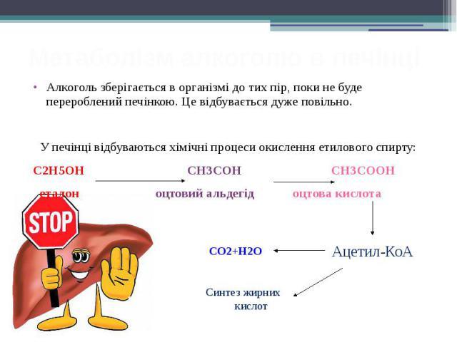 Метаболізм алкоголю в печінці Алкоголь зберігається в організмі до тих пір, поки не буде перероблений печінкою. Це відбувається дуже повільно. У печінці відбуваються хімічні процеси окислення етилового спирту: С2H5ОН СН3СОН СН3СООН еталон оцтовий ал…