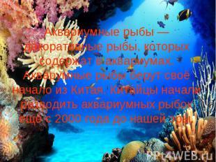 Аквариумные рыбы — декоративные рыбы, которых содержат в аквариумах. Акварумные