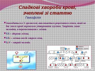 Гемофілія Знаходиться в Х хромосомі, викликається рецесивним геном, який не дає