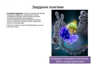 Завдання генетики Основним завданнямгенетики є розроблення методів управлі