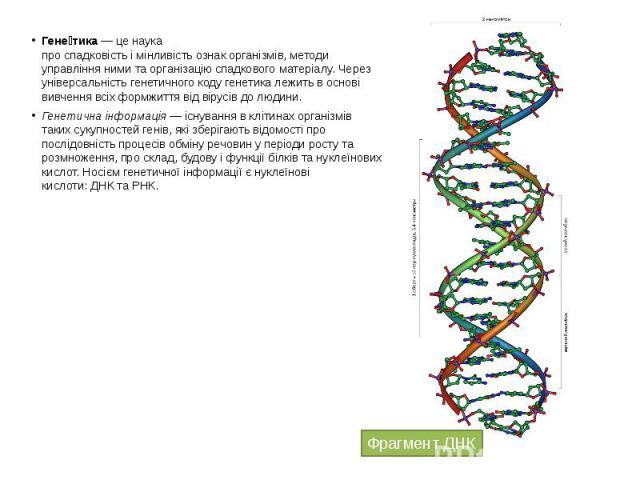 Гене тика— це наука проспадковістьімінливістьознакорганізмів, методи управління ними та організацію спадкового матеріалу. Через універсальністьгенетичного кодугенетика лежить в основі вивчення всіх фор…