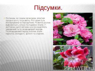 Підсумки. Рослинам, як і іншим організмам, властиві процеси росту та розвитку. Р