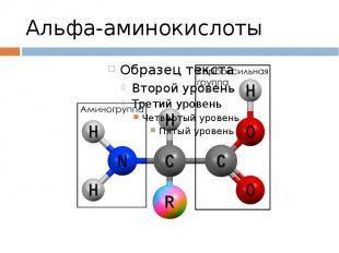 Альфа-аминокислоты