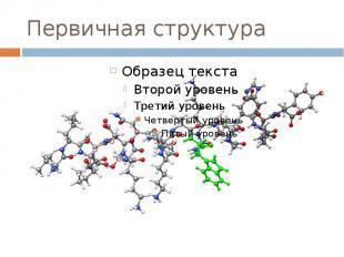 Первичная структура