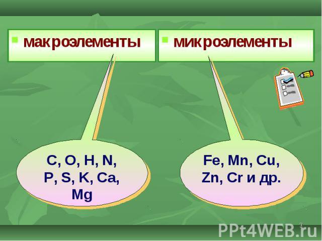 макроэлементы макроэлементы