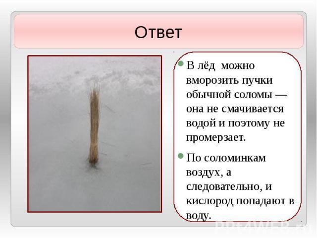 В лёд можно вморозить пучки обычной соломы — она не смачивается водой и поэтому не промерзает. В лёд можно вморозить пучки обычной соломы — она не смачивается водой и поэтому не промерзает. По соломинкам воздух, а следовательно, и кислород попадают …