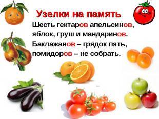 Шесть гектаров апельсинов, Шесть гектаров апельсинов, яблок, груш и мандаринов.