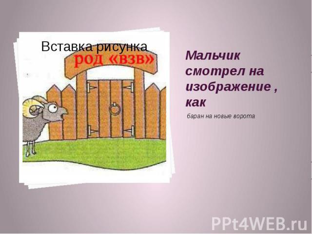 Мальчик смотрел на изображение , как баран на новые ворота
